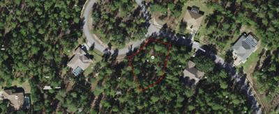 17 DIANTHUS CT, Homosassa, FL 34446 - Photo 1
