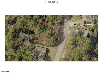 5 BELLS OF IRELAND CT, Homosassa, FL 34446 - Photo 2