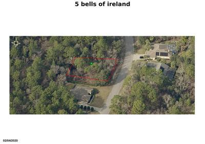 5 BELLS OF IRELAND CT, Homosassa, FL 34446 - Photo 1