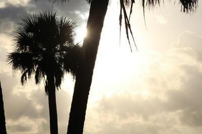 1376 25TH CT SW, Vero Beach, FL 32962 - Photo 1