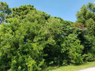1913 SE SOUTH BUTTONWOOD DR, Port Saint Lucie, FL 34952 - Photo 1