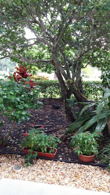 3507 VILLAGE BLVD APT 106, West Palm Beach, FL 33409 - Photo 2