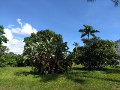 471 NW 9TH ST, Boca Raton, FL 33432 - Photo 2