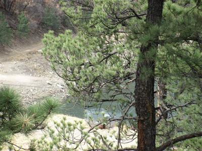 255 LAKE SHORE DR, Alto, NM 88312 - Photo 2