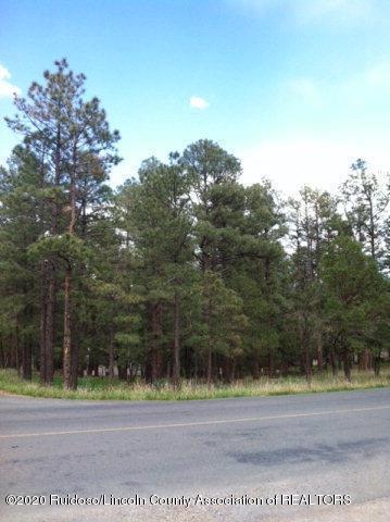 201/202 HIGH MESA ROAD, Alto, NM 88312 - Photo 1