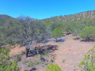 0 PECOS COURT, Alto, NM 88312 - Photo 1