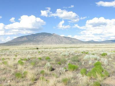 363 LONE WOLF TRAIL, Carrizozo, NM 88301 - Photo 2
