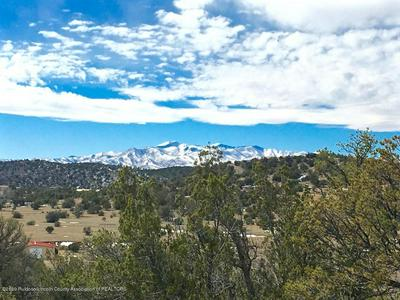 LOT 2 & 3 LA CUMBRE, CAPITAN, NM 88316 - Photo 1
