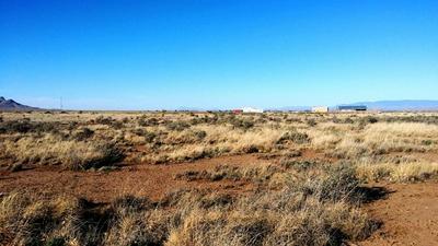 214 GOPHER GULCH LOOP, Carrizozo, NM 88301 - Photo 2