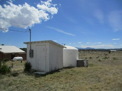 LOT 3 OTHER #X, Capitan, NM 88316 - Photo 2