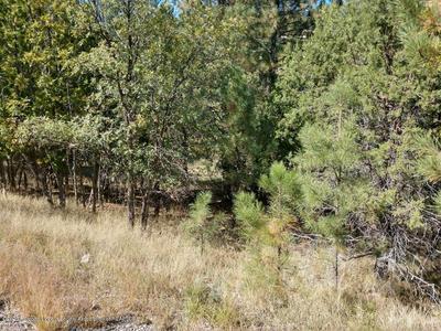 L32 SAWMILL CANYON ROAD, Alto, NM 88312 - Photo 2
