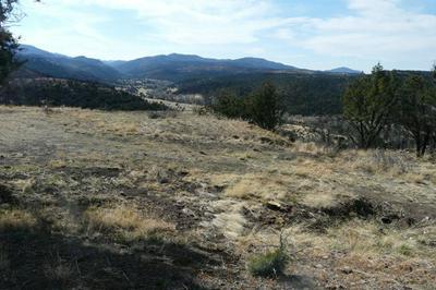 L17 SANDESTA DRIVE, Alto, NM 88312 - Photo 2