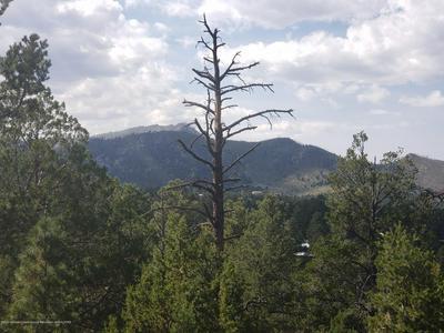 23 ALTAMONT TRL, Alto, NM 88312 - Photo 2