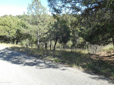 102 TWIN TREE LOOP, Alto, NM 88312 - Photo 2