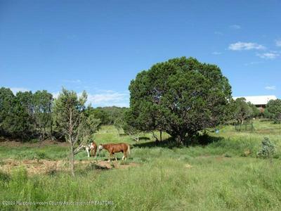 4 WOLF CREEK ROAD, Nogal, NM 88341 - Photo 1