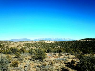 COYOTE RIDGE SUBDIVISION, CAPITAN, NM 88316 - Photo 1
