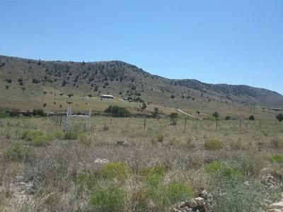317 ALAMO CANYON RD, Tinnie, NM 88351 - Photo 2