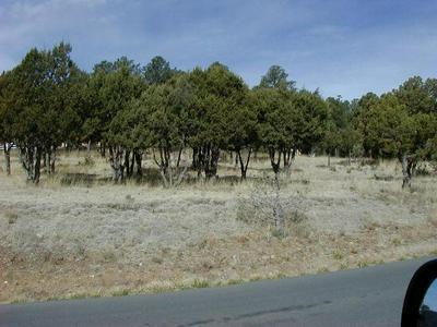 - - SUN VALLEY ROAD, Alto, NM 88312 - Photo 1