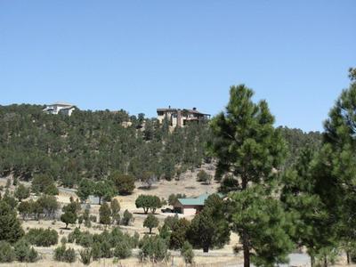 L74 KIT FOX, Alto, NM 88312 - Photo 1