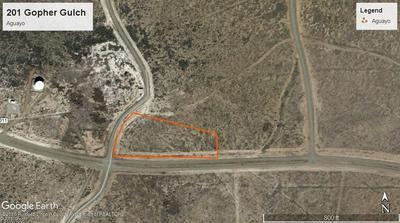 201 GOPHER GULCH LOOP, Carrizozo, NM 88301 - Photo 1