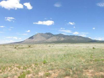 LOT 2C O BAR O ROAD, Carrizozo, NM 88301 - Photo 1