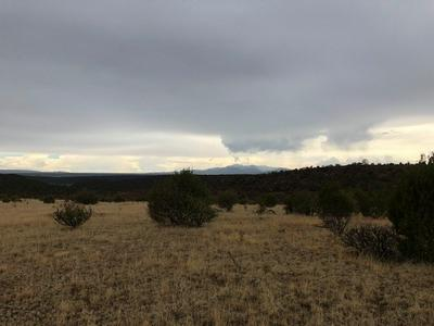 TRACT 3A FORT LONE TREE ROAD, CAPITAN, NM 88316 - Photo 2