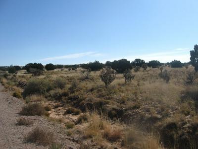 56 RANCH VIEW LOOP, Ancho, NM 88301 - Photo 1