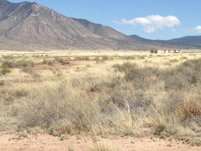 215 FRONTIER RD, Carrizozo, NM 88301 - Photo 1