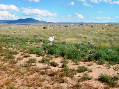 L267 POSSUM TRAIL, Carrizozo, NM 88301 - Photo 2
