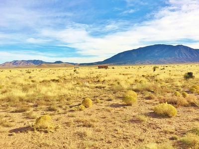 LT. 257 LT 257 VALLE DEL SOL ROAD, Carrizozo, NM 88301 - Photo 2