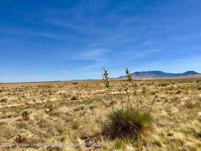101 SETTLER LN, Carrizozo, NM 88301 - Photo 1