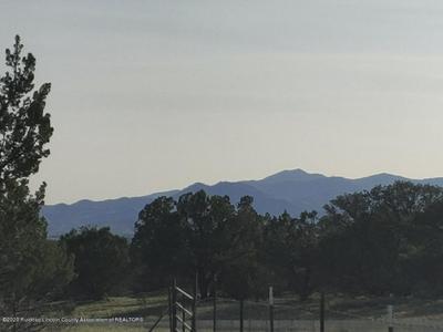 142 GRAY RD, Capitan, NM 88316 - Photo 2