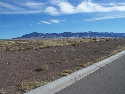 244 GOPHER GULCH LOOP, Carrizozo, NM 88301 - Photo 1