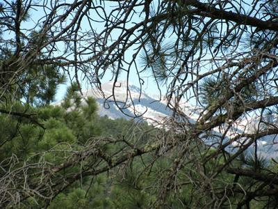 255 LAKE SHORE DR, Alto, NM 88312 - Photo 1
