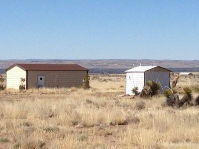 105 SETTLER LN, Carrizozo, NM 88301 - Photo 1