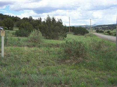 185 LOOKOUT PEAK RD, Capitan, NM 88316 - Photo 2
