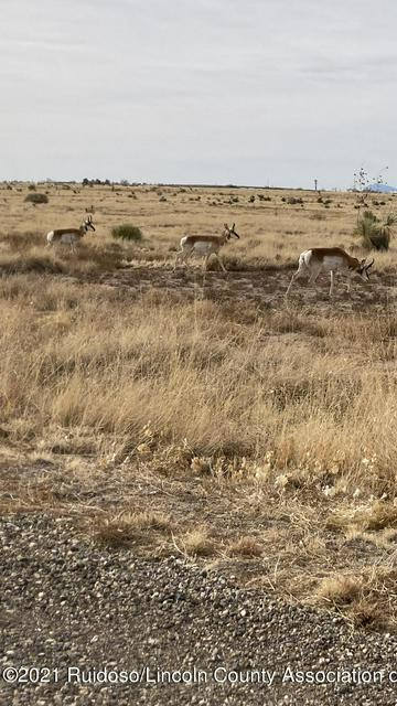 109 CARBINE LANE, Carrizozo, NM 88301 - Photo 2