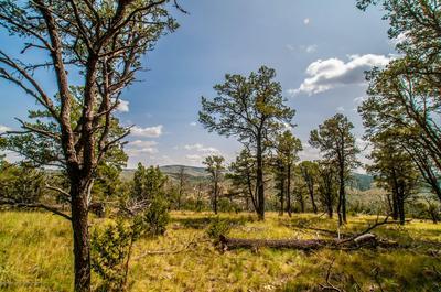 LOT 34 GOLDEN EAGLE COURT, Alto, NM 88312 - Photo 1