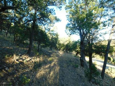 LOT 9 STABLE ROAD, Alto, NM 88312 - Photo 1