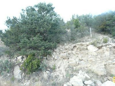 L25 LITTLE BIG HORN ROAD, Alto, NM 88312 - Photo 1
