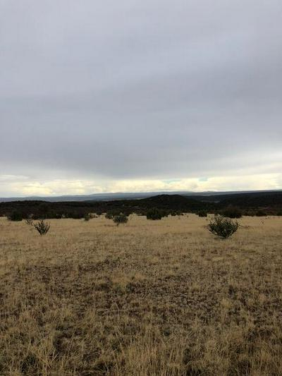 TRACT 3A FORT LONE TREE ROAD, CAPITAN, NM 88316 - Photo 1