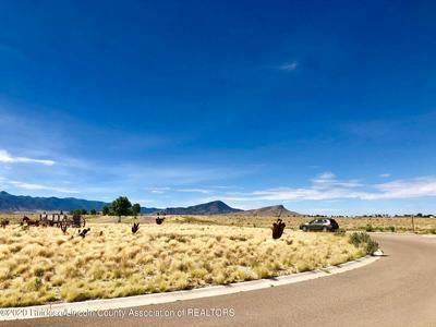 101 SETTLER LN, Carrizozo, NM 88301 - Photo 2