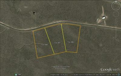 L268 POSSUM TRAIL, Carrizozo, NM 88301 - Photo 1