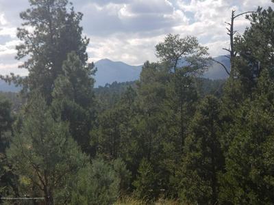 23 ALTAMONT TRL, Alto, NM 88312 - Photo 1