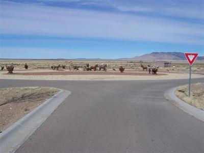 244 GOPHER GULCH LOOP, Carrizozo, NM 88301 - Photo 2