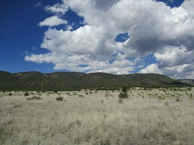 LOT 3 OTHER #X, Capitan, NM 88316 - Photo 1
