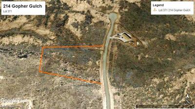 214 GOPHER GULCH LOOP, Carrizozo, NM 88301 - Photo 1