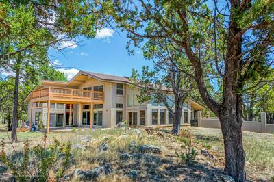 1097 STATE HIGHWAY 48, Alto, NM 88312 - Photo 1