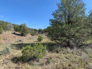 156 LONG RD, CAPITAN, NM 88316 - Photo 1