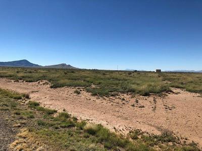 206 HIGH NOON RD, Carrizozo, NM 88301 - Photo 1
